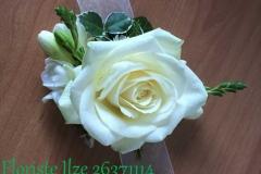IMG_4242(2)