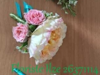 IMG_3614(2)