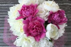 Baltu un rozā peoniju apsveikuma pušķis