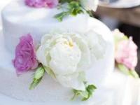 Kāzu torte ar cukura masu un dzīvajiem ziediem