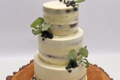 Naked cake ar eikaliptu un melleņu dekoru