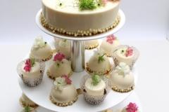 Maskarpones- aveņu kūciņas saldumu galdam