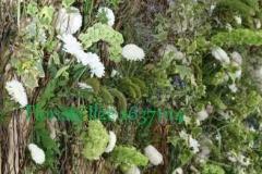 Ziedu un zaļumu siena