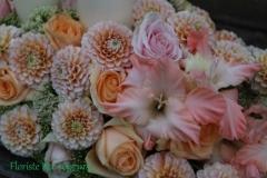 Ziedi rozā un persiku toņos