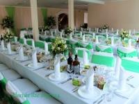 Dekori viesu namā - balts un zaļš. Kalna žagari