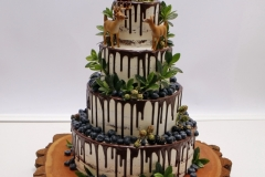 Kāzu torte ar stirniņām. Meža tēma. Šokolādes kāzu torte. Torte ar brūkleņu mētrām un mellenēm.