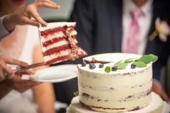 Piedāvājam kāzu kūku degustācijas