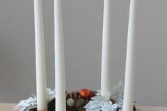 Baltas Ziemassvētku zvaigznes
